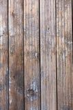 木老被绘的纹理 图库摄影