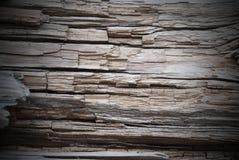 木背景或纹理、拷贝空间和框架 免版税库存图片