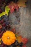 木背景用南瓜和叶子,垂直,顶视图 库存照片