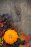 木背景用季节性南瓜和叶子,垂直 免版税图库摄影