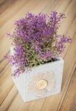 木背景的小装饰盆的植物,家庭12月 免版税库存图片
