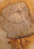 木背景的日志 图库摄影