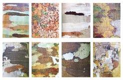 木背景的汇集。 库存照片