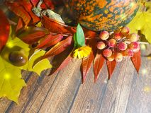木背景离开苹果构成秋天11月 库存照片
