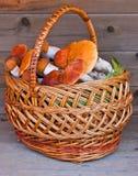 木背景篮子充分的蘑菇 免版税库存图片