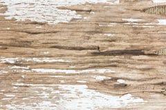 木背景老的纹理 免版税库存照片