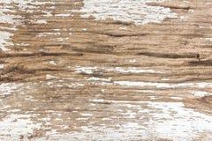 木背景老的纹理 库存图片