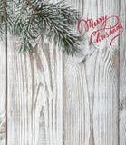 木背景 空白 绿色冷杉分支  桔子 空间圣诞节或新年 Xmas卡片贺卡 库存照片