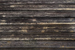 木背景 纹理被风化的木头 抽象土气表面 免版税图库摄影
