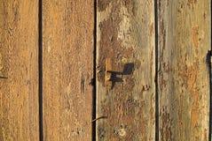 木背景 免版税图库摄影