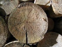 木背景10 免版税图库摄影