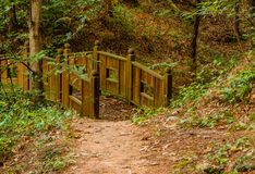 木脚桥梁在森林地公园 图库摄影