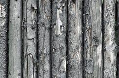 木范围的纹理 库存照片