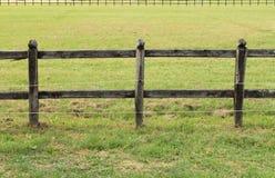 木范围的马 免版税图库摄影