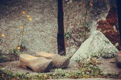 木荷兰鞋子,传统障碍物鞋类 库存照片