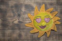 木表面上的多刺的太阳 免版税库存照片