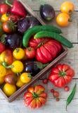 木表面上的新鲜蔬菜 蕃茄、胡椒、黄瓜和茄子 土气样式 免版税库存照片