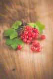 木表面上的红浆果 免版税库存图片