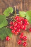 木表面上的红浆果 免版税库存照片