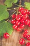 木表面上的红浆果 库存图片