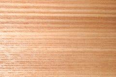 木表面纹理作为背景,特写镜头的 免版税图库摄影
