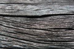 木表面,木背景,木地板,树 免版税库存图片