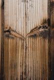 木表面,木背景,木地板,树 免版税图库摄影