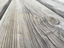 木表 免版税库存图片