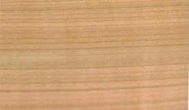 木被染黄的板材 免版税图库摄影