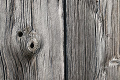 木被漂白的纹理 免版税库存图片