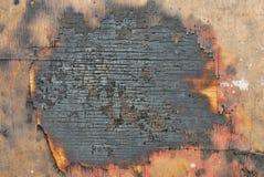 木被烧的纹理 免版税库存图片