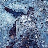 木被烧的纹理 库存图片