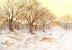 木被绘的冬天 库存照片