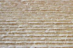 木裁减的宏观纹理在锯有一把圆锯的一个委员会以后 免版税库存照片