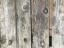 木裁减的木纹理 库存图片