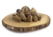 木装饰的iv 免版税库存照片