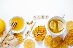 木词病残,茶用柠檬,温度计,姜,蜂蜜,片剂和烘干在白色背景顶视图舱内甲板位置的叶子 免版税库存图片