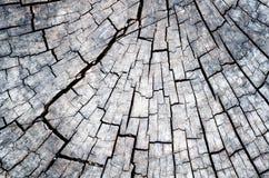 木详细资料。 老木材被找出的室外 免版税库存图片