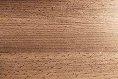 木详细的纹理背景难看的东西样式 库存图片