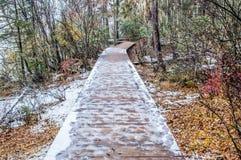 木走道在冬天 图库摄影