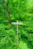 木足迹签到挪威森林 免版税库存图片