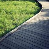 木道路在春天公园 变老的照片 图库摄影