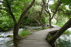 木道路在河和穿过树在Krka国家公园,克罗地亚 库存图片