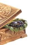 木配件箱的珍宝 库存照片