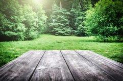 木野餐桌在森林里 库存图片