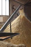 木钻玉米磨房 免版税库存图片