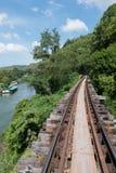 木铁路在森林里 免版税库存图片
