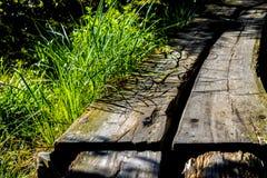 木铁路领带桥梁在阿科底亚国家公园的缅因 免版税库存图片