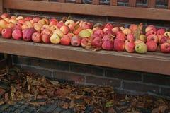 木银行用新鲜的苹果 免版税库存图片