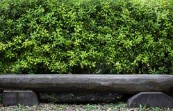 木长凳和绿色树灌木 免版税库存图片